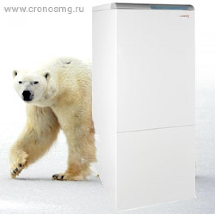 Напольные чугунные газовые котлы Protherm Медведь